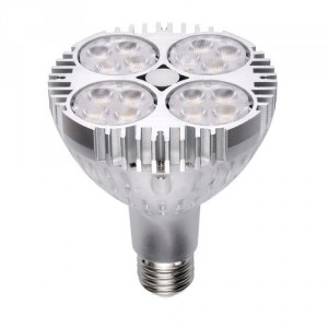 25w-dimmable-par30-led-lights-500x500
